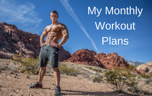 My Monthly Workout Plans Program For Less Than 1$ per Day!