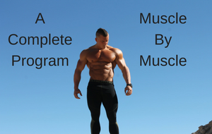 Muscle per Muscle Program For Only 7$